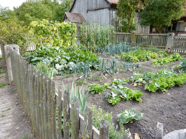 free garden plans and designs