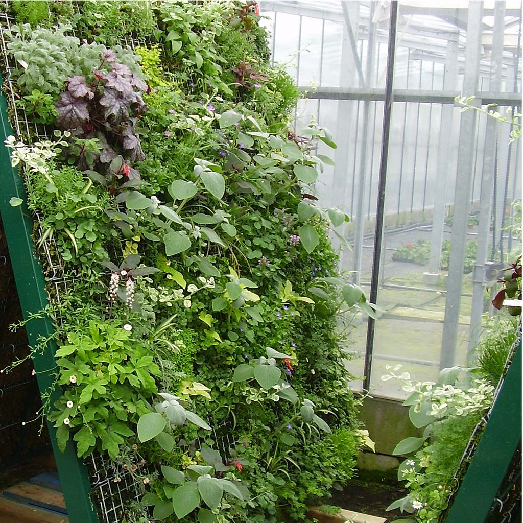 Grow a Vertical Vegetable Garden in a Small Space with Hog Wire ...