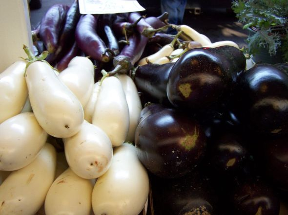 Three_Types_of_Eggplant