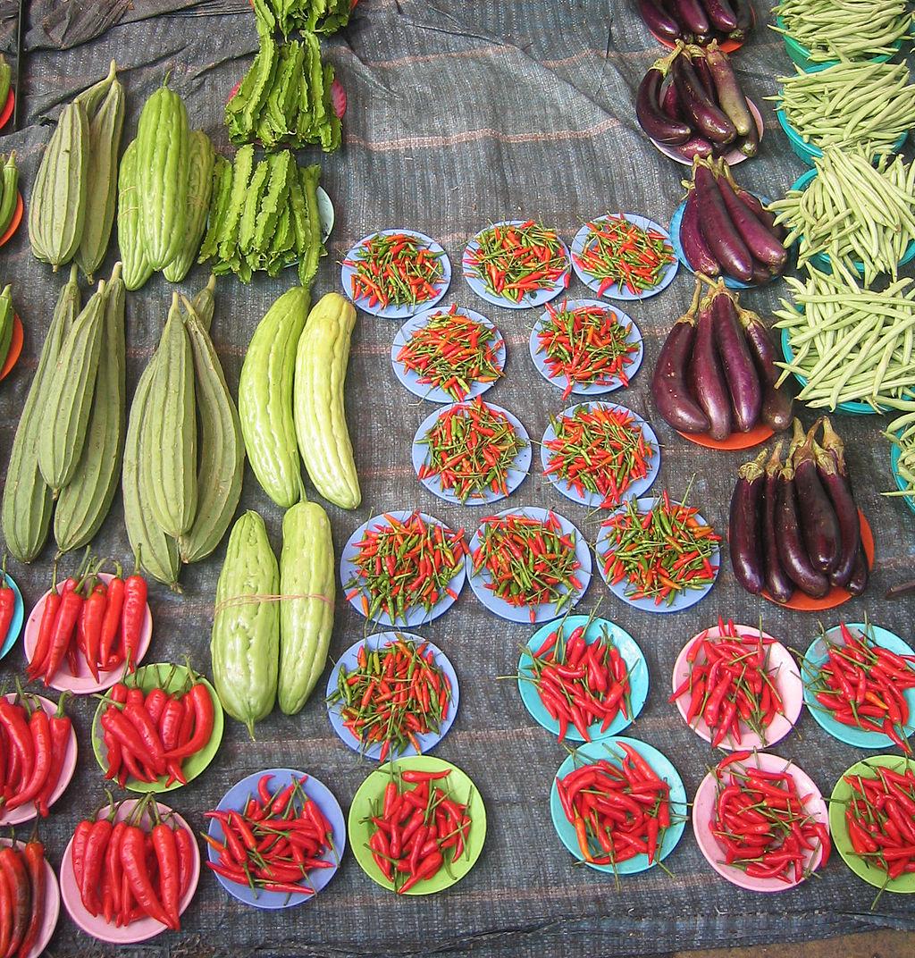 Backyard Organic Container Gardening ~ Organic Gardening For Beginners